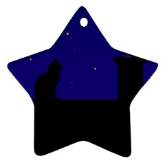 Cat on the roof  Star Ornament (Two Sides)