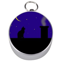 Cat on the roof  Silver Compasses