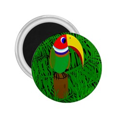 Toucan 2.25  Magnets