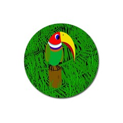 Toucan Magnet 3  (round)