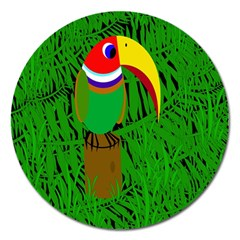Toucan Magnet 5  (round)