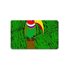 Toucan Magnet (name Card)