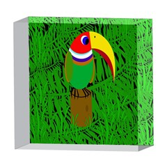 Toucan 5  x 5  Acrylic Photo Blocks
