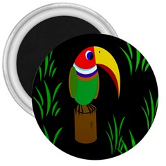 Toucan 3  Magnets