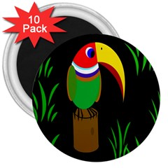 Toucan 3  Magnets (10 Pack)