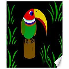 Toucan Canvas 8  x 10
