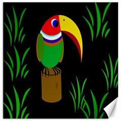 Toucan Canvas 16  x 16