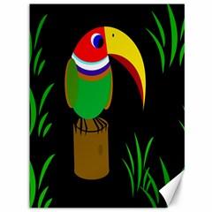 Toucan Canvas 36  x 48