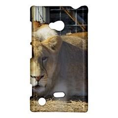 FeMale Lion Nokia Lumia 720