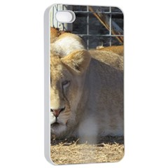 FeMale Lion Apple iPhone 4/4s Seamless Case (White)