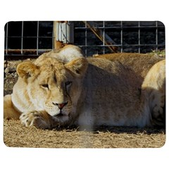 FeMale Lion Jigsaw Puzzle Photo Stand (Rectangular)