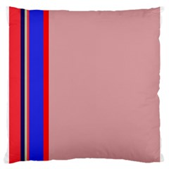Pink elegant lines Large Cushion Case (Two Sides)