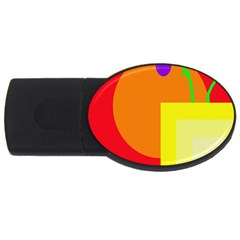 Colorful abstraction USB Flash Drive Oval (1 GB)
