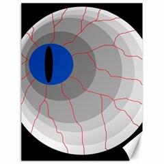 Blue eye Canvas 18  x 24