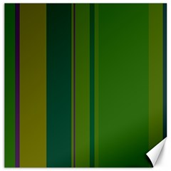 Green elegant lines Canvas 12  x 12