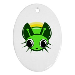 Transparent firefly Ornament (Oval)
