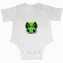 Transparent firefly Infant Creepers
