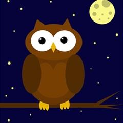 Cute owl Magic Photo Cubes