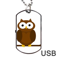 Cute transparent brown owl Dog Tag USB Flash (Two Sides)
