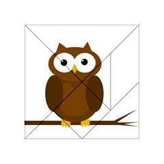 Cute transparent brown owl Acrylic Tangram Puzzle (4  x 4 )