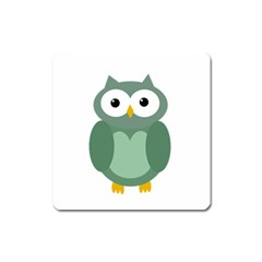 Green cute transparent owl Square Magnet