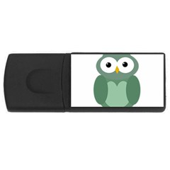 Green cute transparent owl USB Flash Drive Rectangular (1 GB)