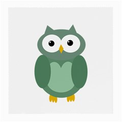 Green cute transparent owl Medium Glasses Cloth (2-Side)