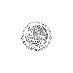 National Seal Of Mexico Shower Curtain 48  x 72  (Small)