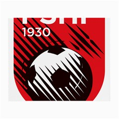 Crest Of The Albanian National Football Team Small Glasses Cloth