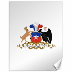 Coat Of Arms Of Chile  Canvas 18  X 24