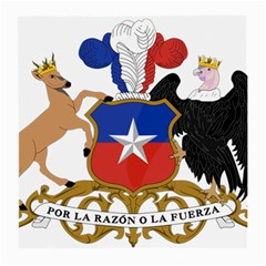 Coat Of Arms Of Chile  Medium Glasses Cloth (2 Side)