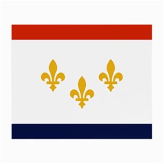Flag Of New Orleans  Small Glasses Cloth
