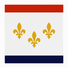Flag Of New Orleans  Medium Glasses Cloth