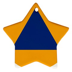International Sign Of Civil Defense Roundel Star Ornament (Two Sides)