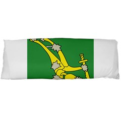 Starry Plough Flag Body Pillow Case Dakimakura (Two Sides)