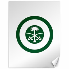 Roundel Of The Royal Saudi Air Force Canvas 18  X 24