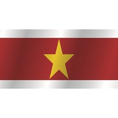 Flag Of Suriname YOU ARE INVITED 3D Greeting Card (8x4)