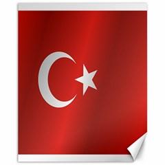 Flag Of Turkey Canvas 11  x 14