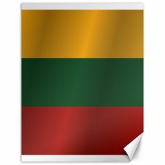 Flag Of Lithuania Canvas 12  x 16