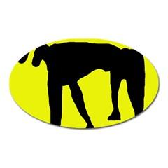 Black dog Oval Magnet