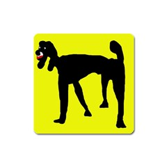 Black dog Square Magnet