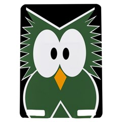 Green owl Kindle Touch 3G