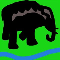 Elephand Canvas 20  x 20