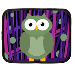 Green and purple owl Netbook Case (XXL)