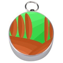 Green and orange landscape Silver Compasses