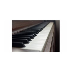 Piano Keys  Satin Wrap