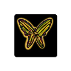 Night butterfly Square Magnet