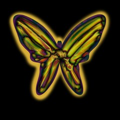 Night butterfly Magic Photo Cubes