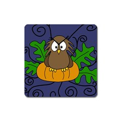 Halloween owl and pumpkin Square Magnet