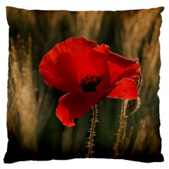 Red Poppy Large Cushion Case (Two Sided)